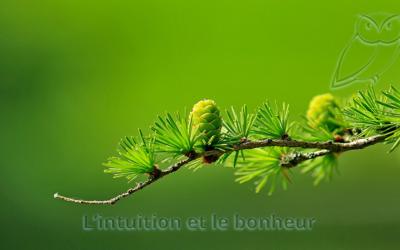 L'intuition et le bonheur