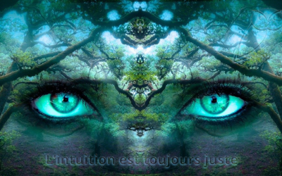L'intuition est toujours juste